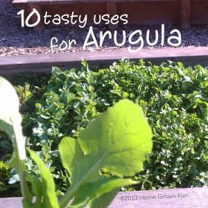 10 Ways to Eat Arugula