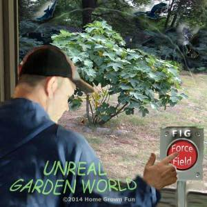 Fig Force Field - Unreal Garden World