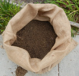 How to Grow Potatoes in Recyled Coffee Sacks