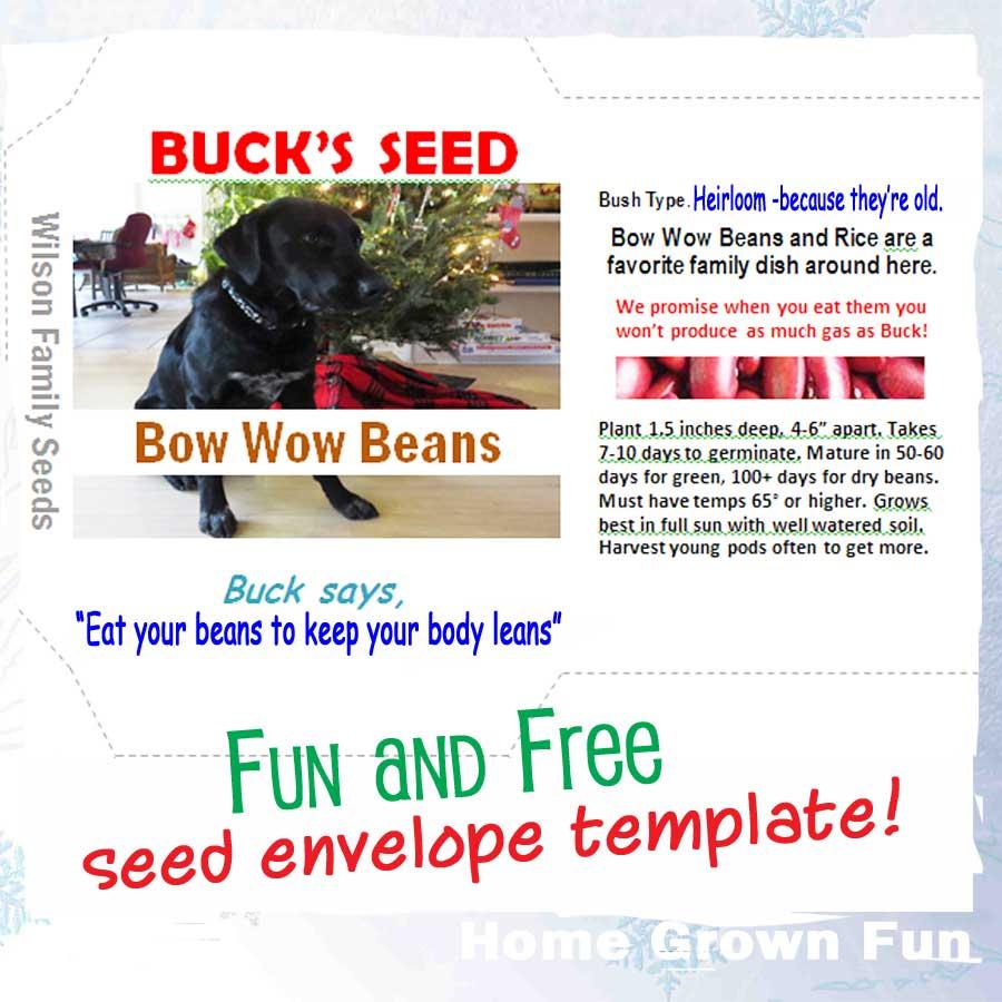 Free Seed Envelope Template Home Grown Fun
