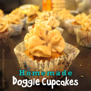Homemade Doggie Banana Cupcake Treats
