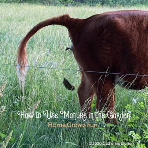 Five Tips for Using Manure in the Garden