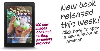 Gardening Book Raised Beds