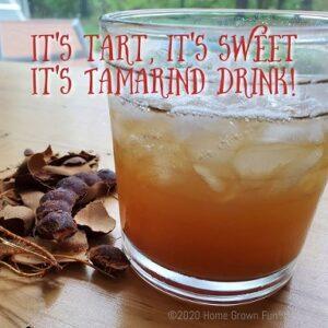 Tamarind Drink Recipe