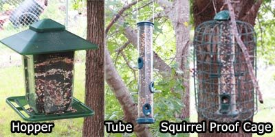 types of bird feeders sunflower seed