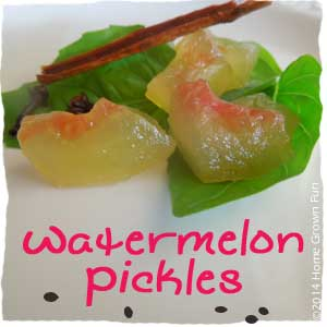 recipe watermelon pickles food