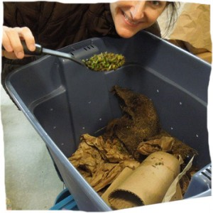 How-To Compost with Worms QUICK REFERENCE