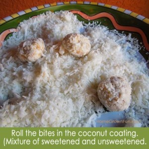healthy coconut macaroons