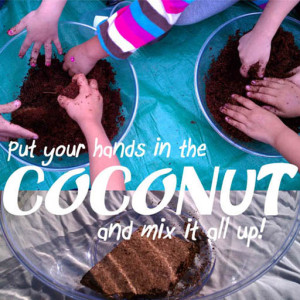 Coconut coir for seed starting