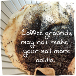 coffee grounds garden fertilizer myths