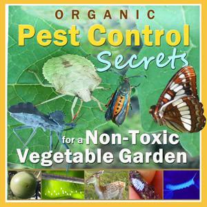 Organic Pest Control Secrets