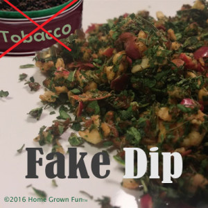 Fake Chewing Tobacco Recipes - Healthy DIY DIP made from Herbs