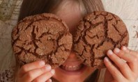 YUMMY Ginger Snap Cookies with Flaxseed
