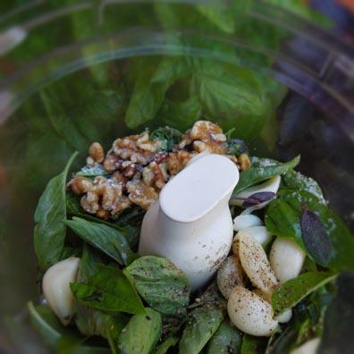 Homemade pesto i food processor walnuts basil