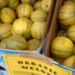 organic melons at the farmers market