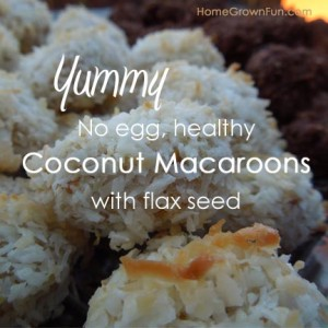 no egg coconut macaroons