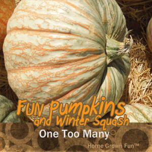 one too many pumpkin seeds uses winter squash types