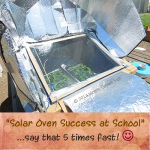 Solar Oven Recipes
