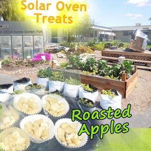bake apples solar oven