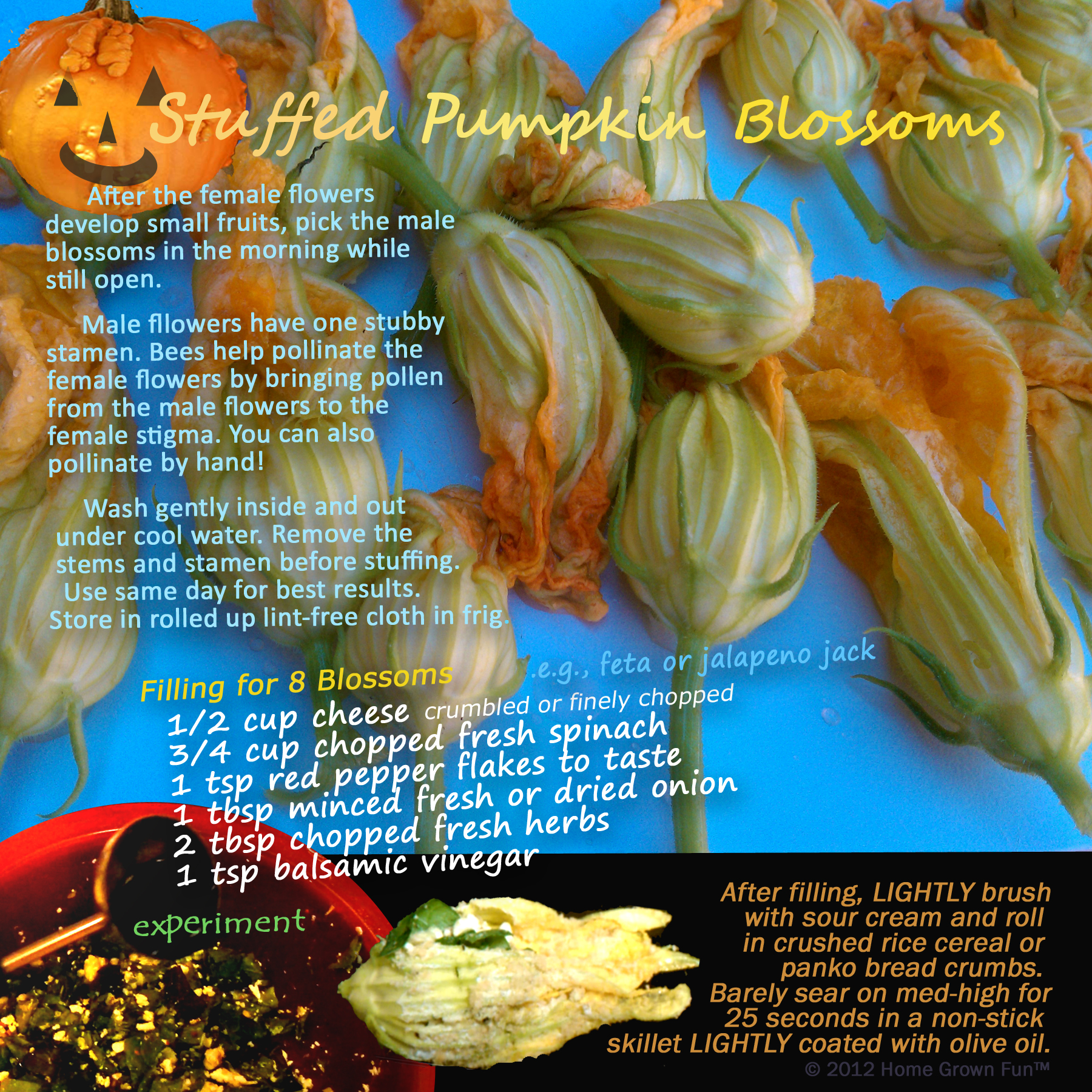 How to make stuffed squash blossoms and how to make stuffed pumpkin blossoms