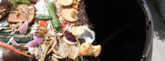 Pros and Cons of the Urban Compost Tumbler