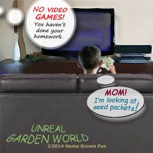 Garden World - Video Games and Seed Packets